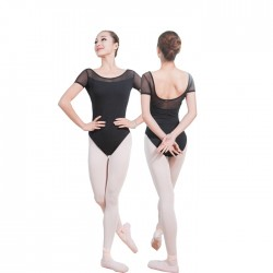 B100627    Women Leotards